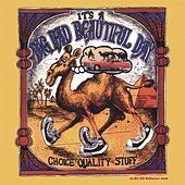 Choice Quality Stuff (Remastered) by It's A Beautiful Day