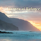 Journey of Balance by Various Artists