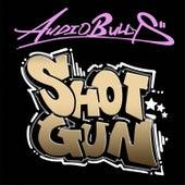 Shotgun by Audio Bullys