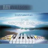 The Secret Place: Seek My Face (Instrumental) by Ray Watson
