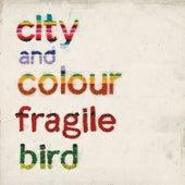 Fragile Bird by City And Colour