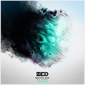 Beautiful Now by Zedd