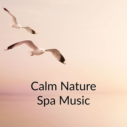 Calm Nature Spa Music by Massage Tribe