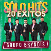 Sólo Hits by Grupo Bryndis