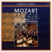 Mozart: Laudate Dominum by Various Artists