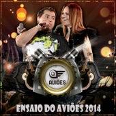 Ensaio Do Aviões 2014 by Aviões Do Forró