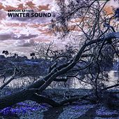 Winter Sound by Various Artists