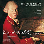 Der frühe Mozart: The Early Mozart by Various Artists