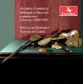 Gabrieli: Madrigali et ricercai à 4 voci by Various Artists