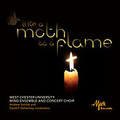 Like a Moth to a Flame by Various Artists