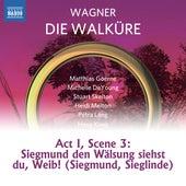 Wagner: Die Walküre, WWV 86B: Siegmund, den Wälsung siehst du, Weib! by Stuart Skelton