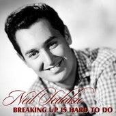 Breaking Up Is Hard To Do by Neil Sedaka