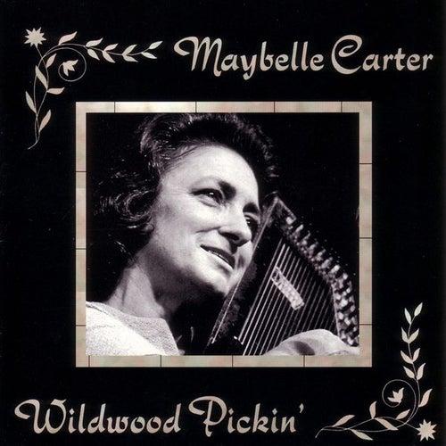 Wildwood Pickin' by Various Artists