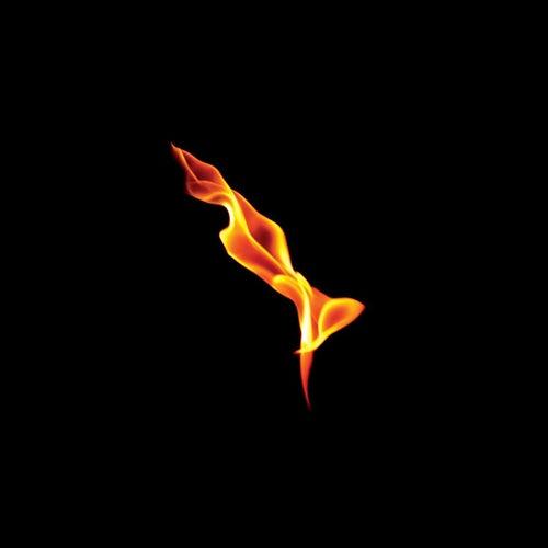 Dark On Fire by Turin Brakes