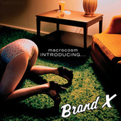 Macrocosm - Introducing... Brand X by Brand X