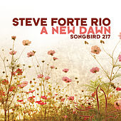 A New Dawn by Steve Forte Rio