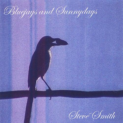 Bluejays and Sunnydays by Steve Smith
