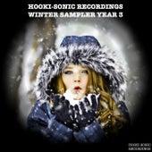 Hooki-Sonic Recordings: Winter Sampler Year 3 by Various Artists
