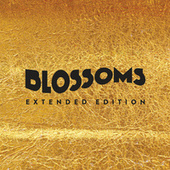 Blossoms by Blossoms