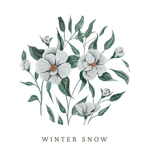 Winter Snow by Audrey Assad