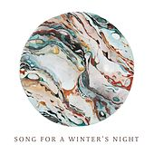 Song for a Winter's Night by Audrey Assad