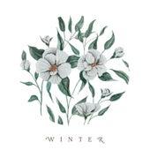 Winter by Audrey Assad