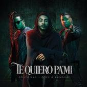 Te Quiero Pa´Mi by Don Omar