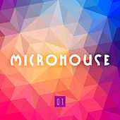 Microhouse, Vol. 1 by Various Artists