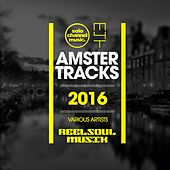 Amster-Tracks by Various Artists
