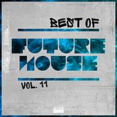 Best of Future House, Vol. 11 by Various Artists