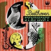 Beethoven 9 by Schütz Choir of London