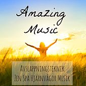 Amazing Music - Avslappningsteknik Zen Spa Hjärnvågor Musik för Chakra Terapi Helande Massage Sömncykel med Instrumental Romantisk Piano Lugnande Ljud by Various Artists