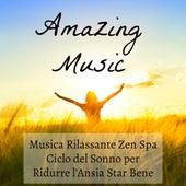 Amazing Music - Musica Rilassante Zen Spa Ciclo del Sonno per Ridurre l'Ansia Star Bene con Suoni Meditativi Strumentali Romantici New Age dalla Naura by Various Artists