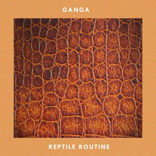 Reptile Routine by Ganga (Hindi)