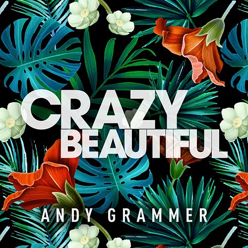 Crazy Beautiful EP by Andy Grammer