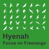 Focus On Freerange:  Hyenah by Hyenah