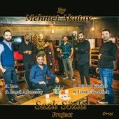 Sazlı Sözlü Project by Mehmet Akatay by Various Artists