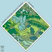 Honduras Paradise REMIXES by Various Artists