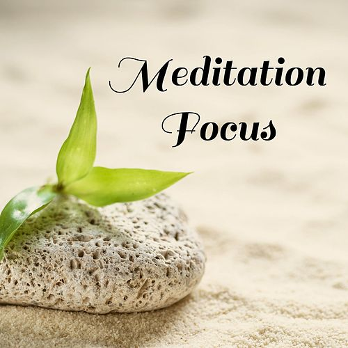 Meditation Focus by Nature Sounds Nature Music