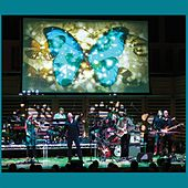 A Stone's Throw from the Line (Live) by Big Big Train