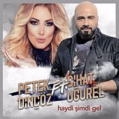 Haydi Şimdi Gel by Petek Dinçöz