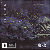 Cold Skin by Seven Lions