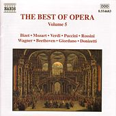 Best of Opera Vol. 5 by Various Artists