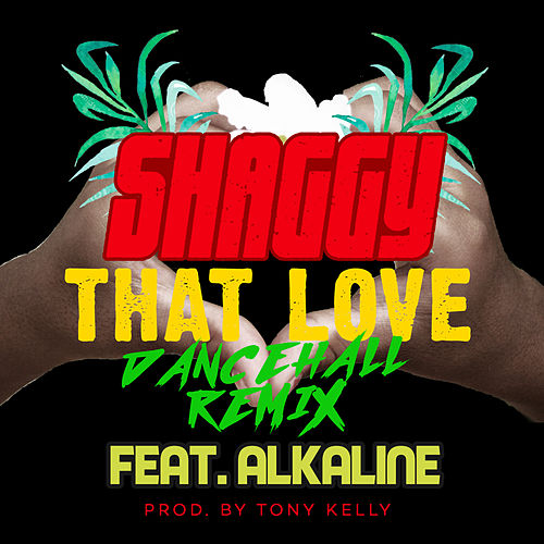 That Love (Dancehall Remix) by Shaggy