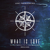 What Is Love 2016 (Remixes) by Lost Frequencies