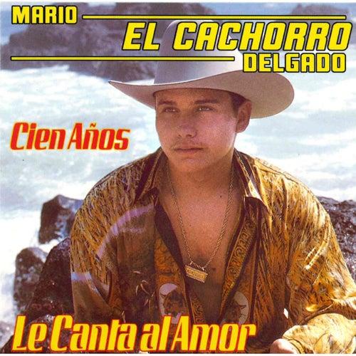 Cien Anos by Mario