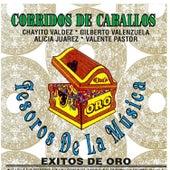 Corridos de Caballos by Various Artists