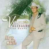 Amor Que Muere by Valentin Elizalde