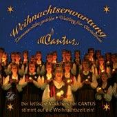 Weihnachtserwartung by Cantus