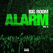 Big Room Alarm, Vol. 9 by Various Artists